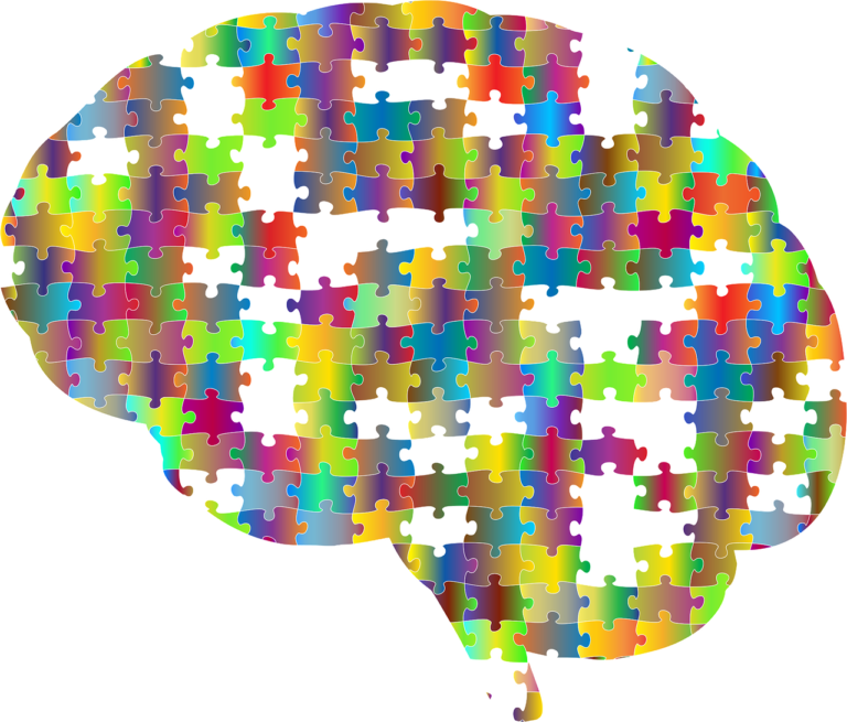 El cerebro humano tarda en madurar