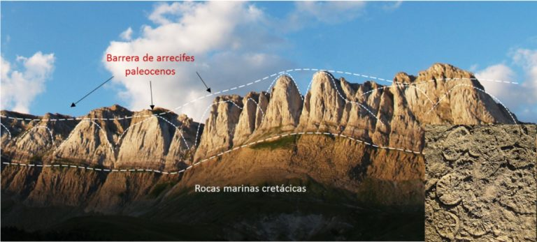 Arrecifes fósiles, una paradoja geológica