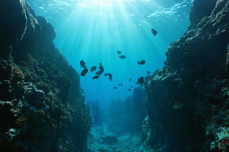 ¿Qué hay más allá de la orilla del mar?