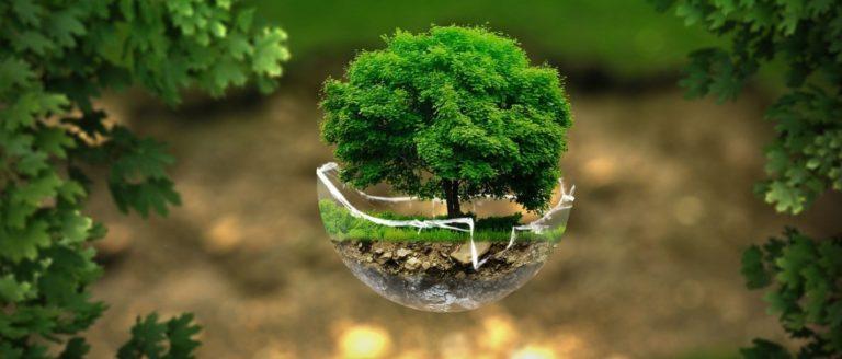 El progreso nos salvará del ecologismo