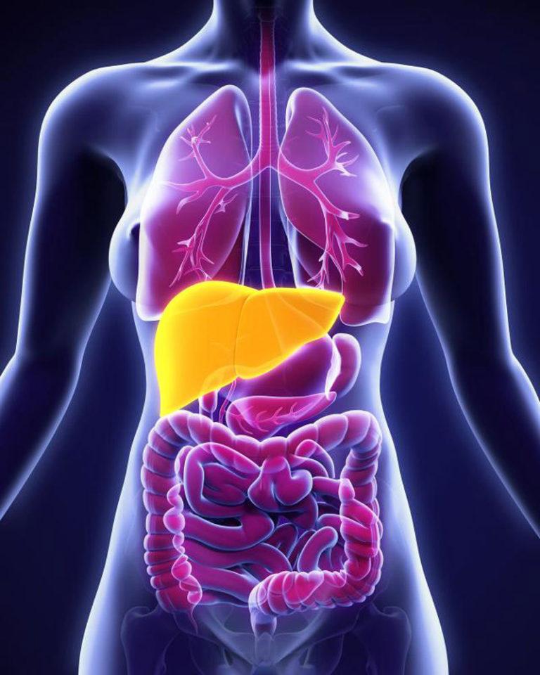 La enfermedad del hígado graso no alcohólico, una gran desconocida
