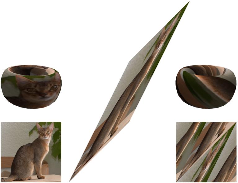 El gato de Arnold