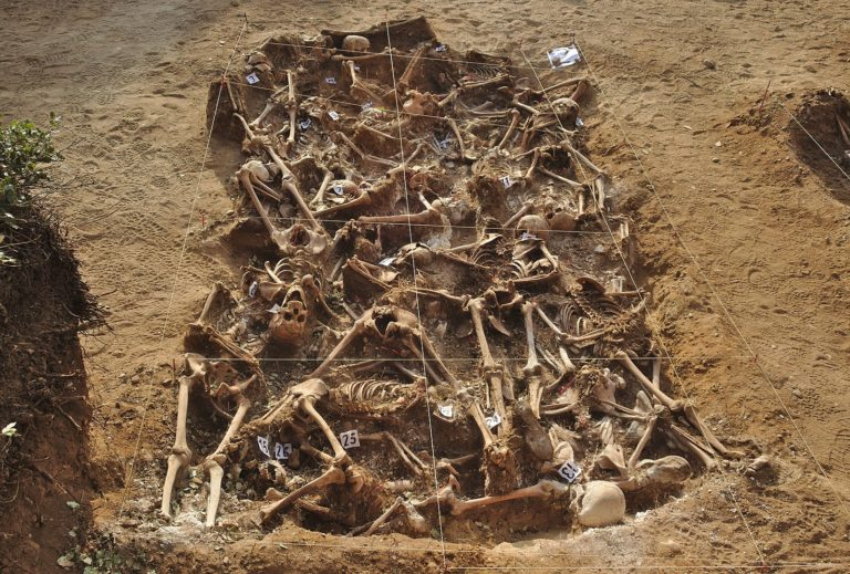 Identificación genética de restos humanos de la Guerra Civil y la dictadura