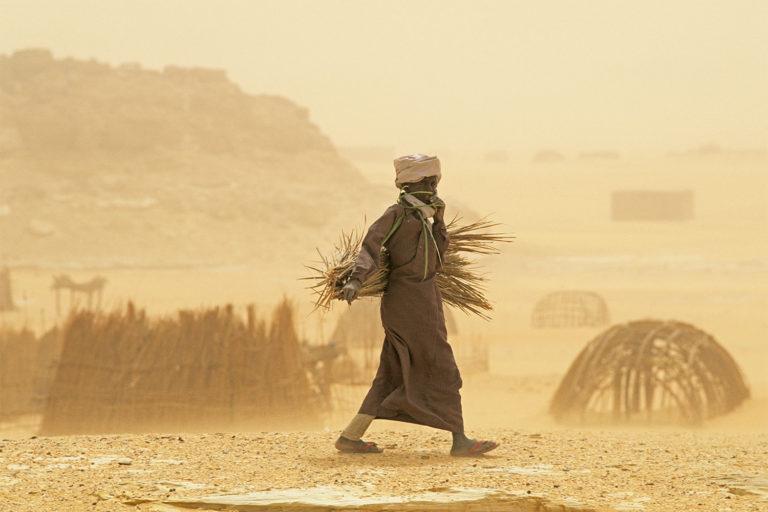 El polvo del Sáhara: fuente de vida y muerte