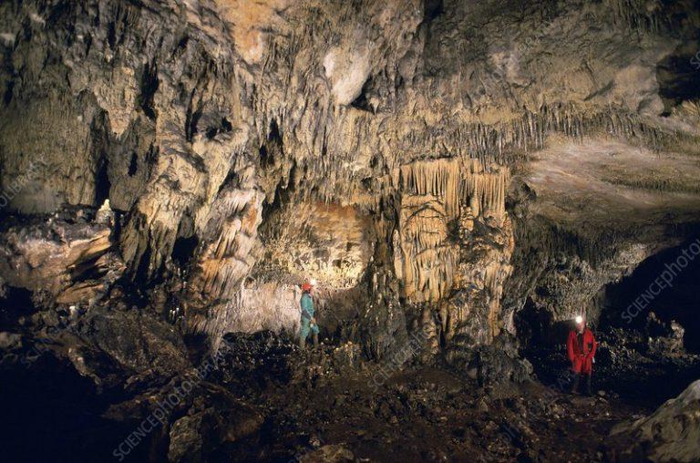 ADN nuclear de varios individuos neandertales a partir de sedimentos