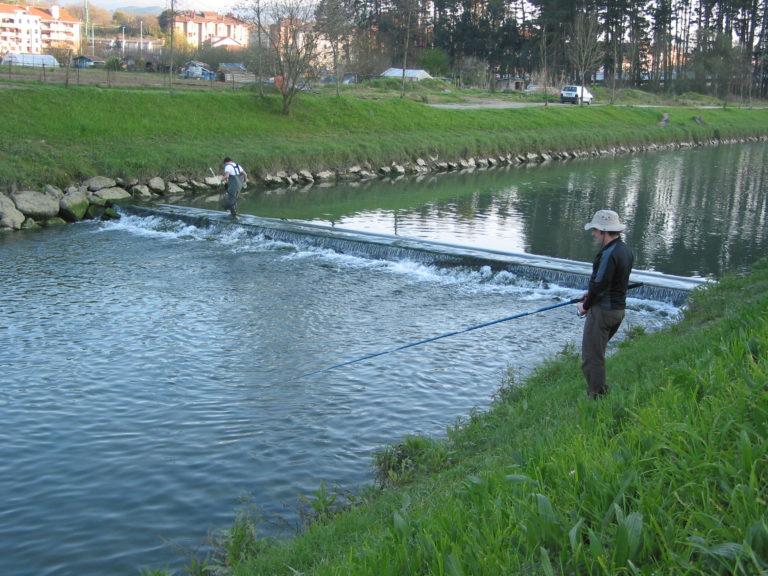 La feminización de las aguas, cosa de humanos
