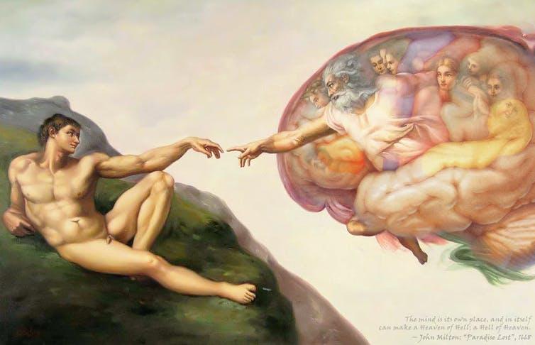 ¿Somos la especie más inteligente del planeta?